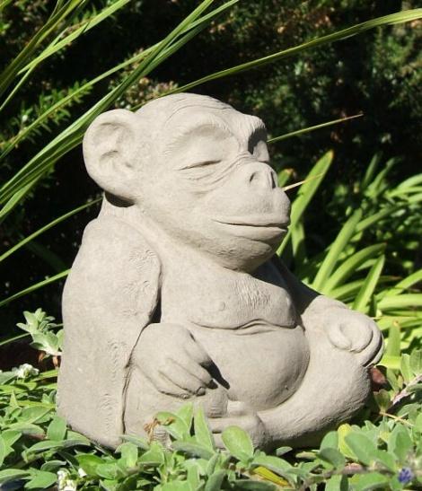Zen Monkees meditation